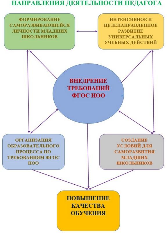 Направления деятельности педагога